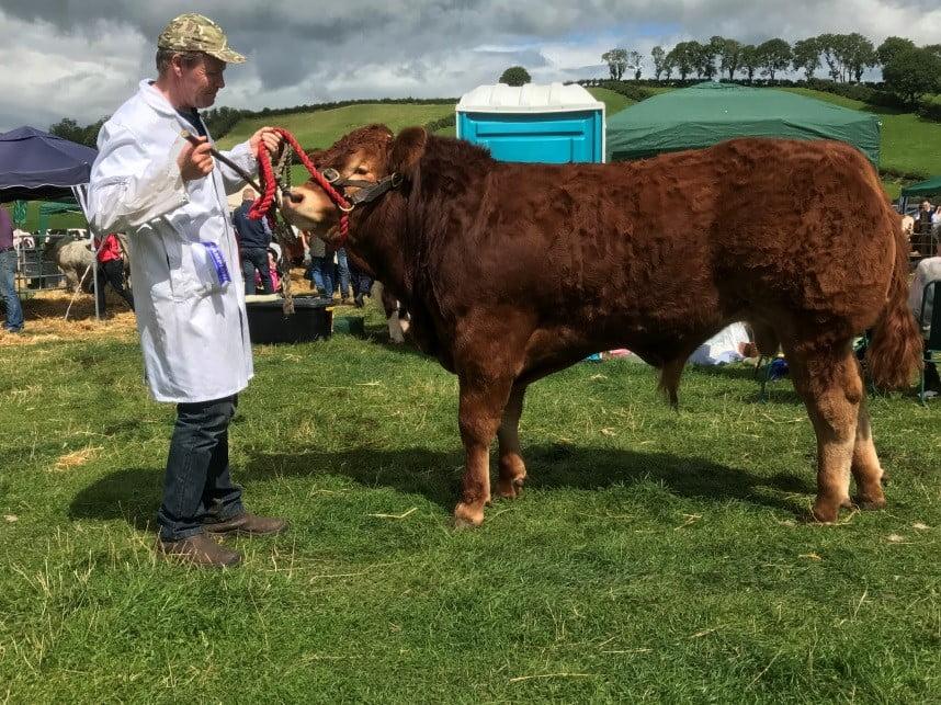 Clastleblaney Reserve Champion 2017